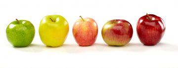 5 varieties of apples: Granny smith, Golden delicious, Gala, Macintosh and Red delicious. Larger files include clipping path.